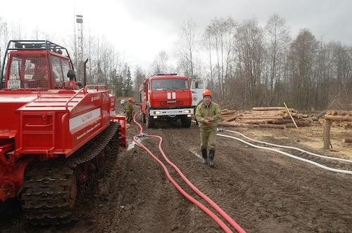 Назащите леса отпожаров