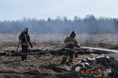 Возгорание в Малышевском лесничестве